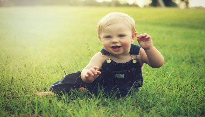 Inilah Beberapa Asupan Makanan Yang Baik Untuk Otak Bayi