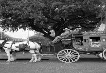 Kereta Kencana; Kendaraan Para Raja dan Ratu yang Mewah pada Masanya
